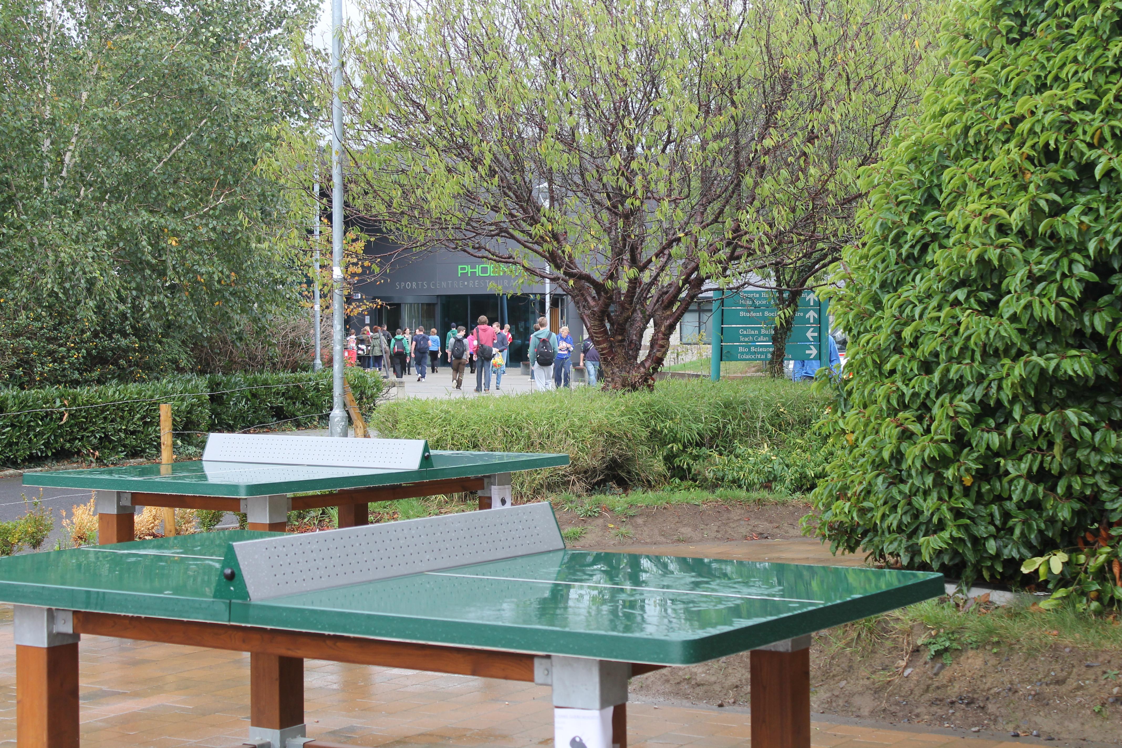 Table Tennis - Leadóg Bhoird