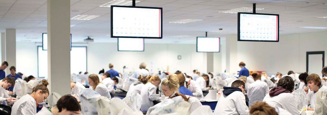 Biology Class Notes on Lab Screens - Maynooth University