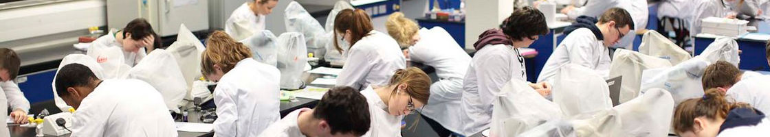 Biology Students at Work in the Lab - Maynooth University