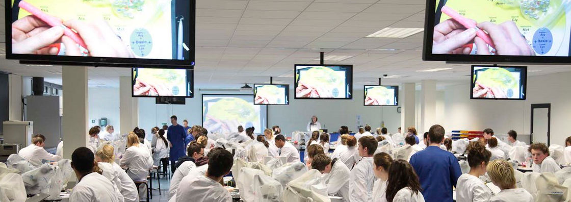 Biology - Watching Demonstration on Dropdown Screens - Maynooth University