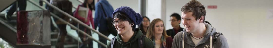 Libraray - Students 8 - Maynooth University