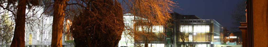 Micheal Bolger - library at night- Maynooth University