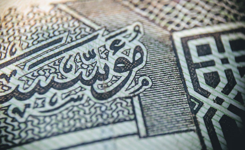 A close up of a Saudi Arabian riyal