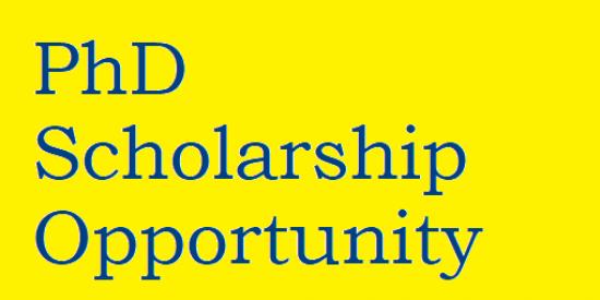 PhD Scholarship Opportunity