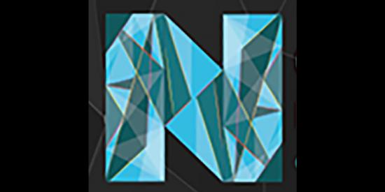 New Perspective Logo